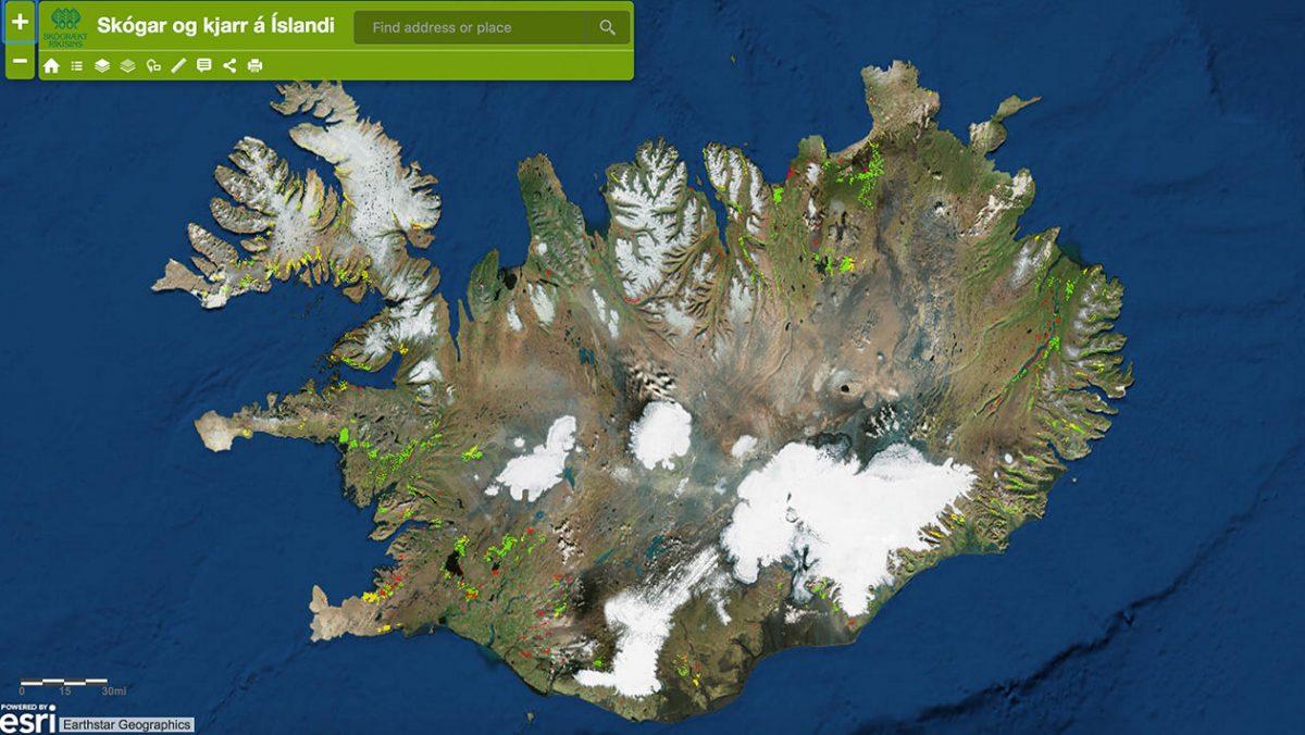Mapa pokazująca miejsca gdzie w Islandii występują lasy